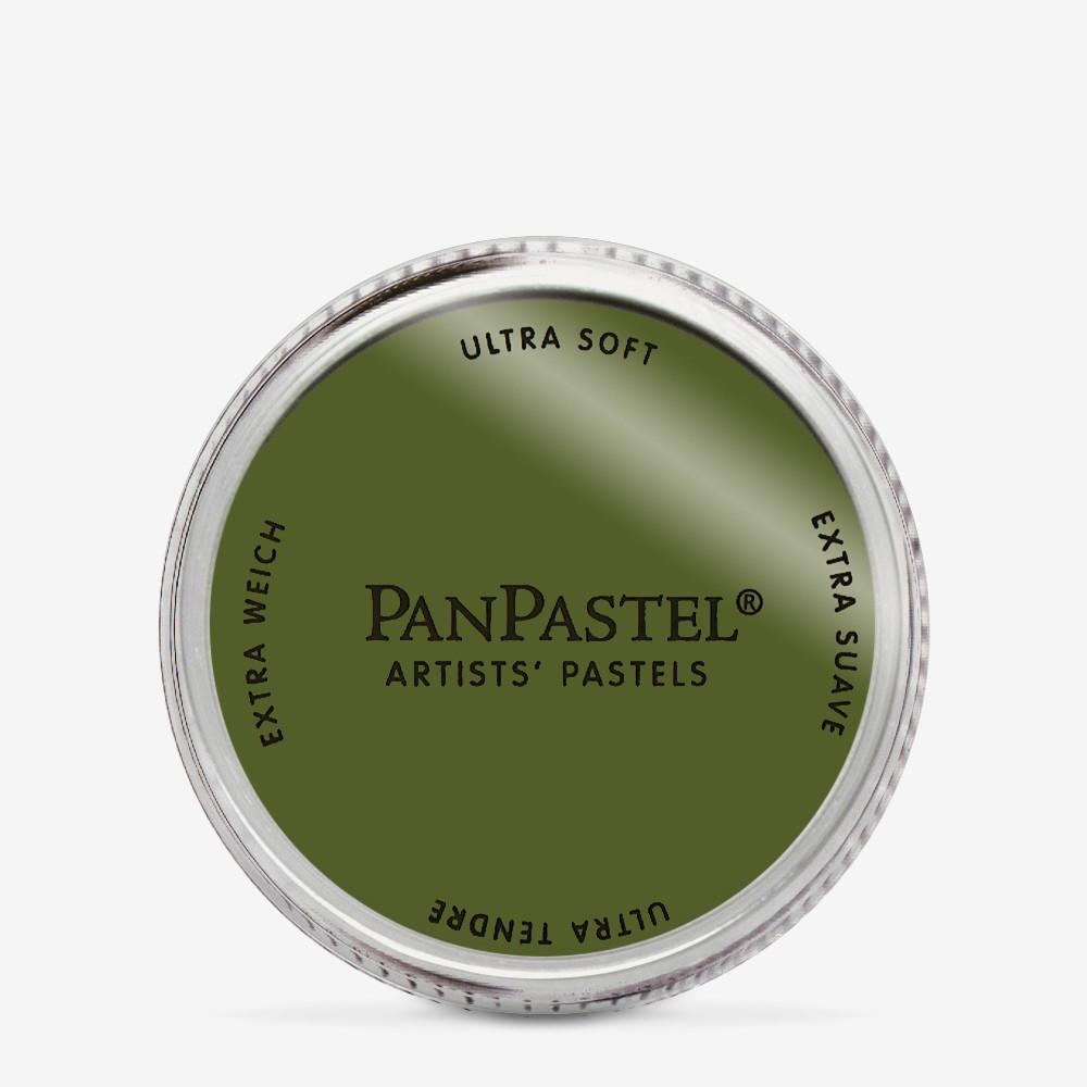 PANPASTEL  ARTISTS PASTELS  BRIGHT YEL OX  GREEN  EXTRA DARK