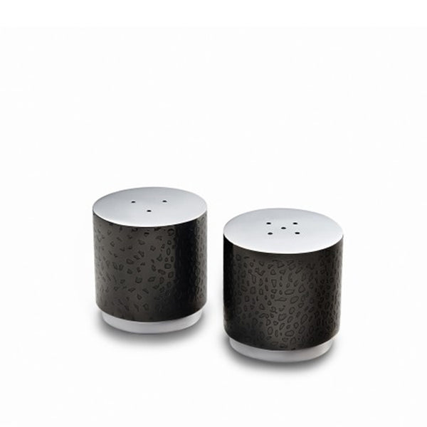 NorthStar Salt & Pepper Set