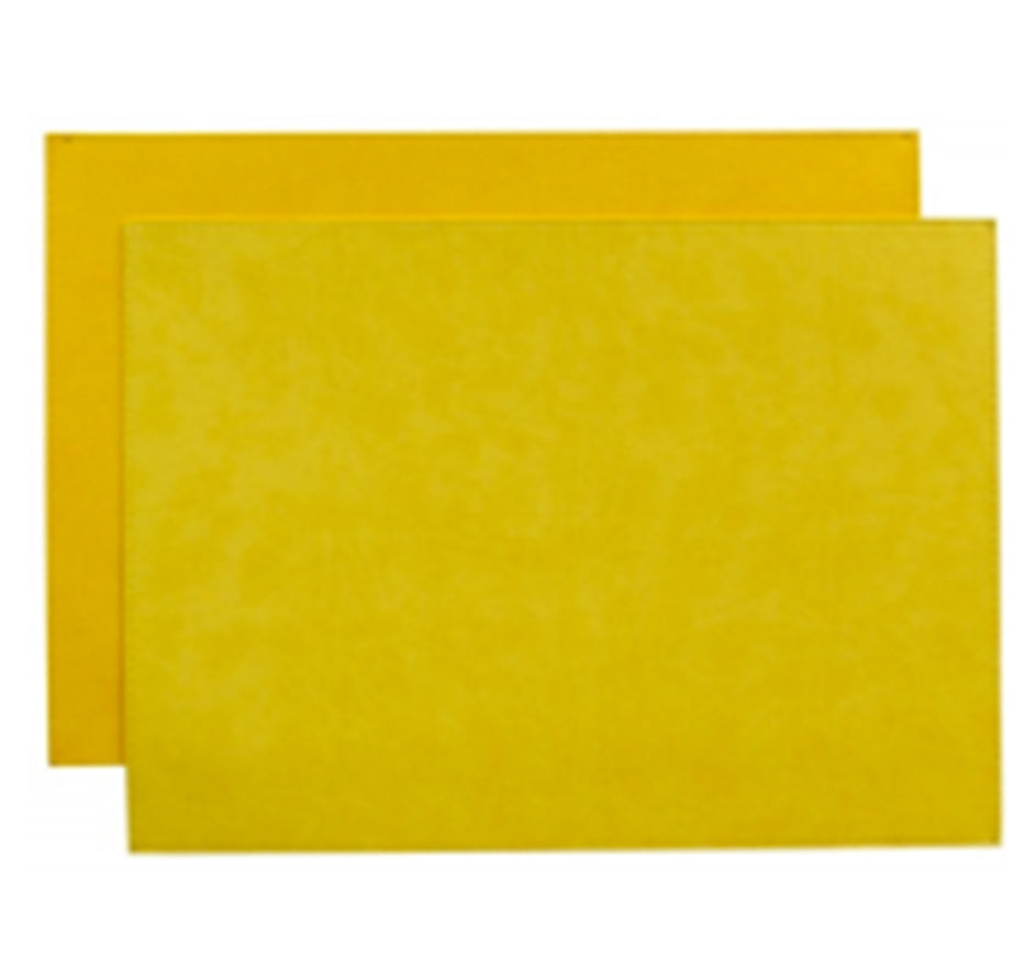 Reversible Gallery Placemat in Lemon & Sunflower (Set of 4)