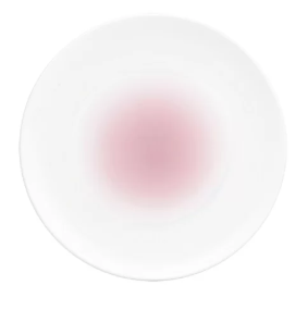 Nikko Dinnerware Collection in Dusty Pink