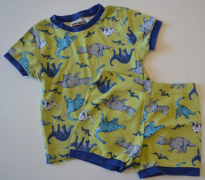 Kirkland Signature Green and Blue Dinosaurs Two-Piece Pajamas