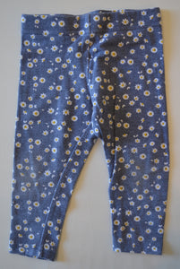 George Blue with Daisies Leggings