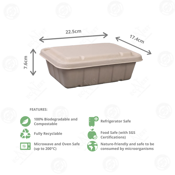 Sugarcane Rectangle Box Large with Lid (1500ml)