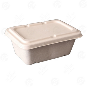 Sugarcane Rectangle Box Medium with Lid (900ml)