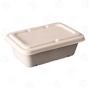 Sugarcane Rectangle Box Small with Lid (650ml)