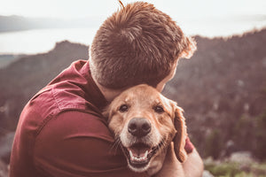 CBD Success Story: Learn How Hemp Can Help Your Dog