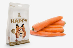 Should You Give Your Dog Carrots?