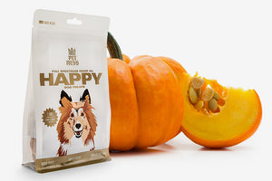 How Can Pumpkin Help Your Dog?