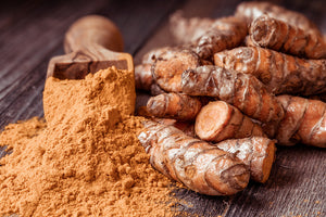 Tumeric for Dogs: How Does it Help?