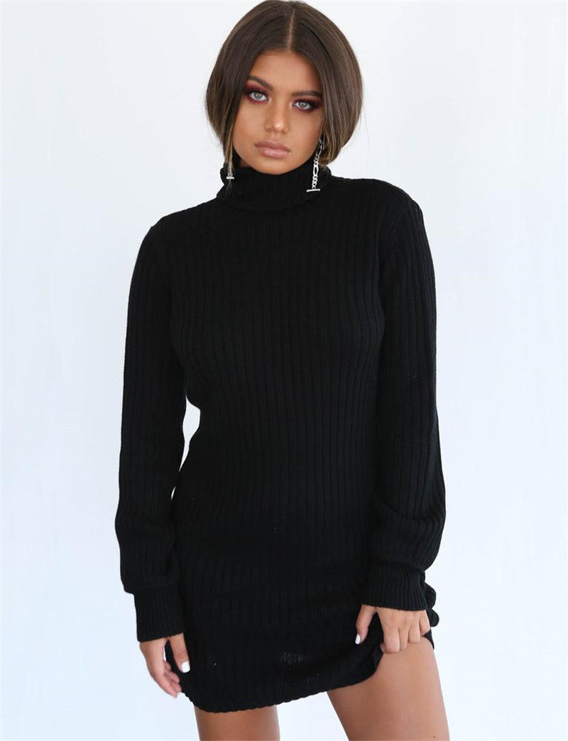 Knitted Pullover Turtleneck Bodycon