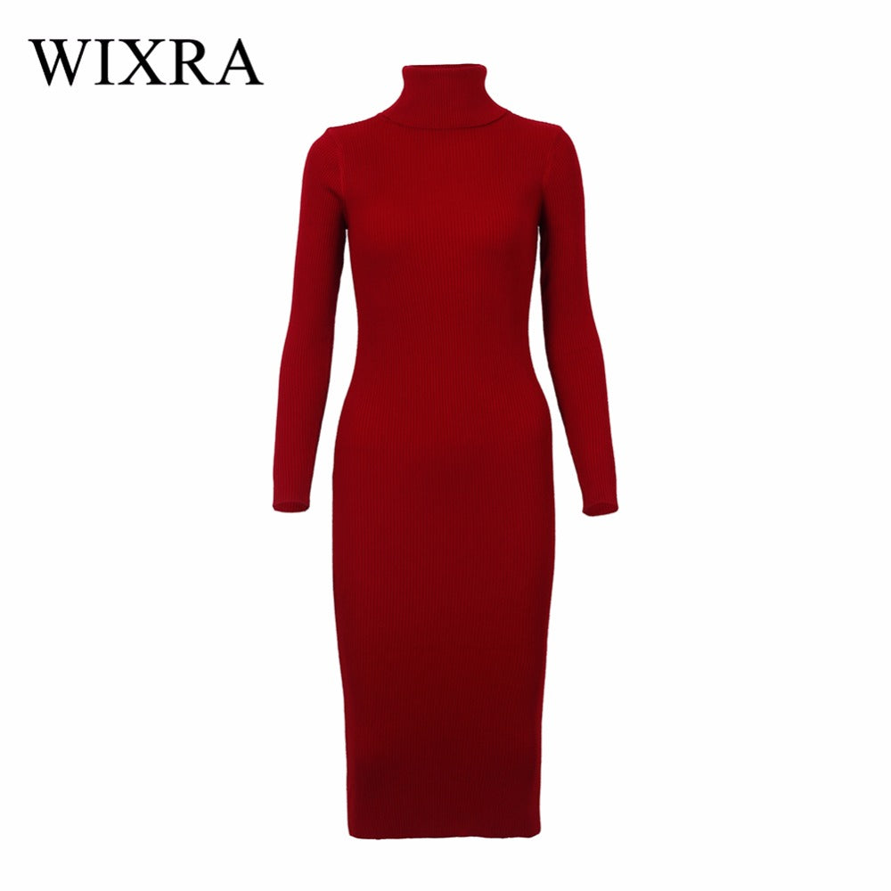 Knitted Turtleneck Long Sleeve Dress