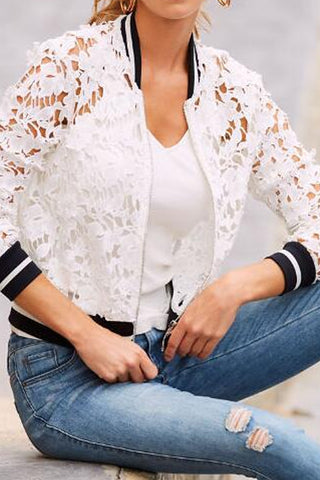 Band Collar  Decorative Lace  Plain Cardigans