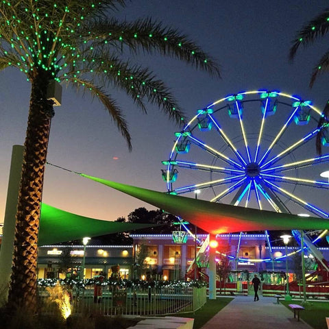 Holiday, Christmas, Ferris wheel, Lights, Palm trees