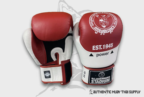 TWINS SPECIAL® |  RAJADAMNERN 75TH ANNIVERSARY BOXING GLOVES | MARCH SHIPMENT