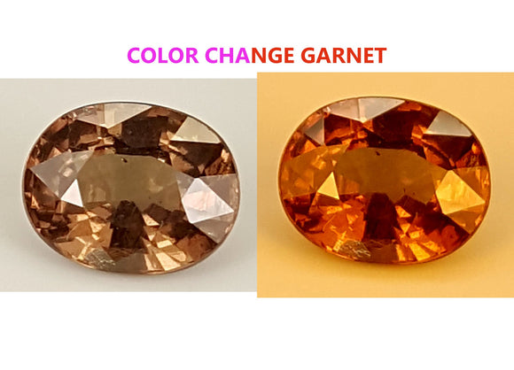 1.2 CT GARNET COLOR CHANGE GEMSTONE IGCCGR03 - imaangems17