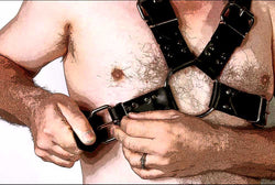 Heavy Classic Chest Harness, buckling up