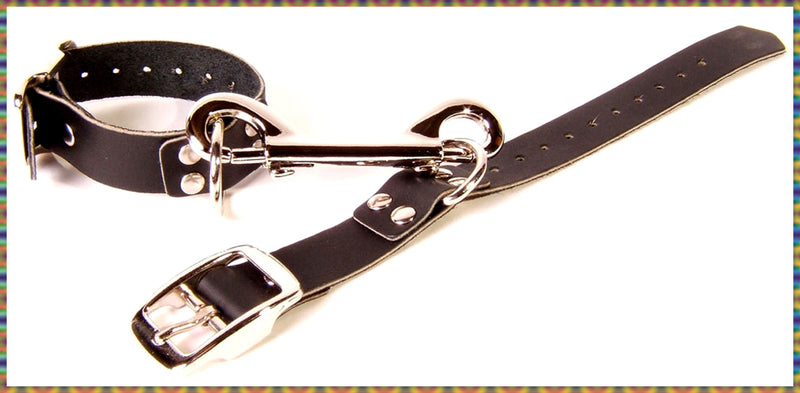 Beginners' sturdy leather restraint set