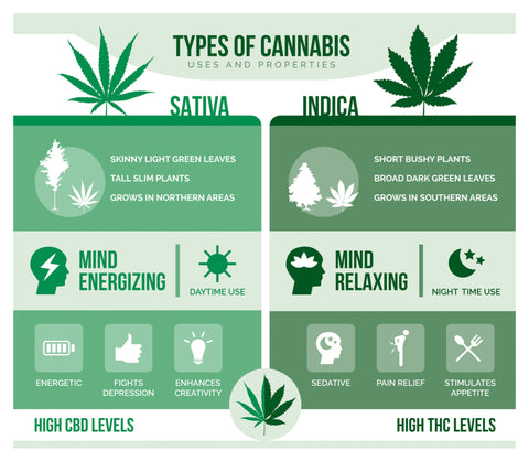 differences in sativa and indica