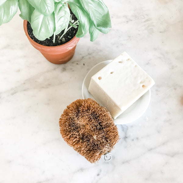 Multipurpose Coconut Fiber Brush