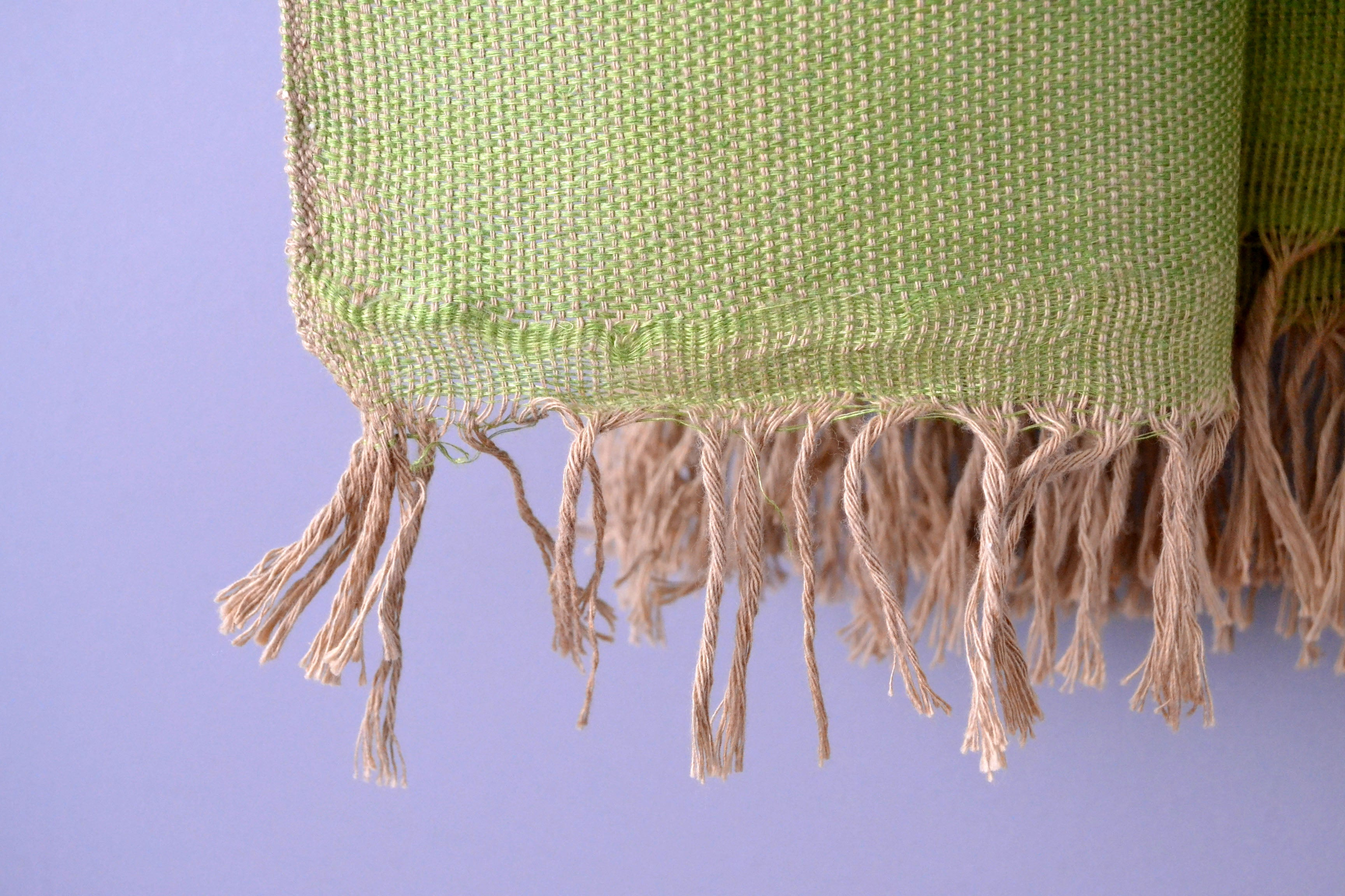Green Cotton Throw Blanket Fringe by Yuba Mercantile