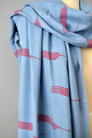 Light Blue and Red Scarf