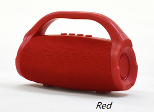 Wireless Bluetooth Waterproof Speaker