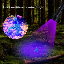 Load image into Gallery viewer, UV Flashlight 51 LED Ultraviolet Pet Urine Detector Bed Bug