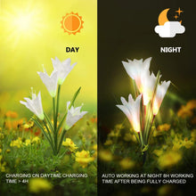 Load image into Gallery viewer, LED Solar Lily Flower Lights 2 Pack 8-Head 7 Color Changing Outdoor Garden Stake Lamps