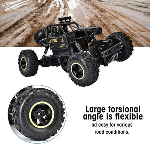 2.4G 4WD Rock Crawlers Car 1:16 RC Buggy Off Road RC Toy