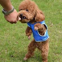 Load image into Gallery viewer, Summer Dog Cooling Vest Coat Sleeveless Puppy Jacket Pet Clothes Clothing for Dogs XS-L