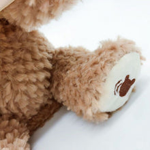 Load image into Gallery viewer, Peek A Boo Teddy Bear Toy