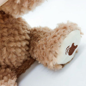 Peek A Boo Teddy Bear Toy