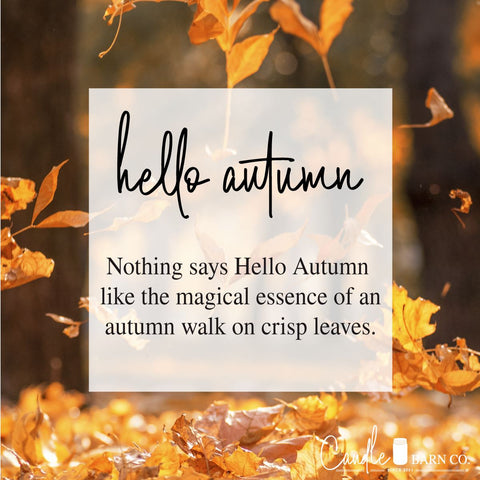 Hello Autumn Mason Jar Candle 8 oz Candles & Melts Candle Baarn Co.