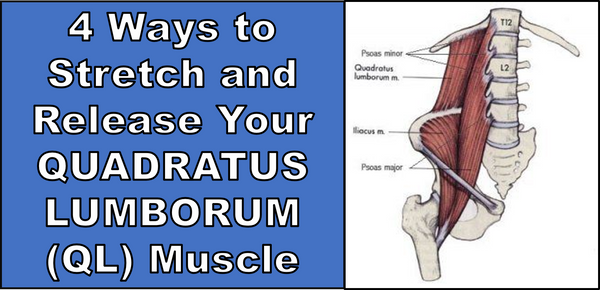 4 Ways to Stretch and Release Your QUADRATUS LUMBORUM (QL) Muscle