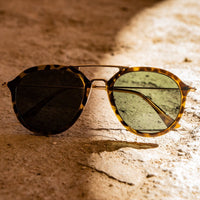 Buy-Conspectus Sunglasses (Green/Black/Yellow)-Online-in South Africa-on Zalemart