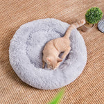 Buy-Plush pet bed 70cm - Grey-Online-in South Africa-on Zalemart