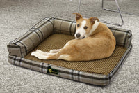 Buy-Rex Pet Sofa - Creme-Online-in South Africa-on Zalemart