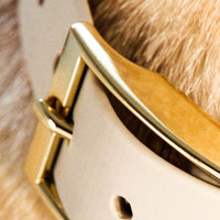 Valgray Yellow Gold Dog Collar for Large Dog Breeds - Zalemart