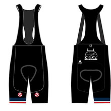 Load image into Gallery viewer, BALLS TO BIKES TEAM BIB SHORTS
