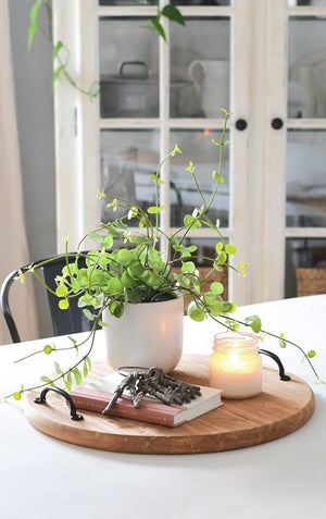 DIY Rustic Tray Workshop