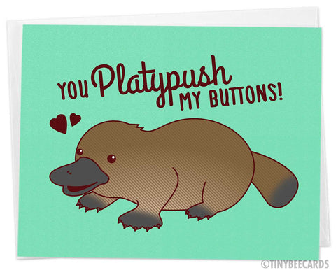 "Cute Valentine's Day Card ""You Platypush My Buttons"""