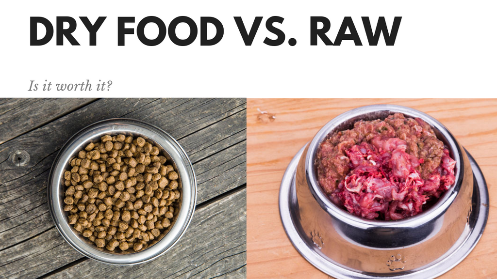 Kibble vs. Fresh Whole Food