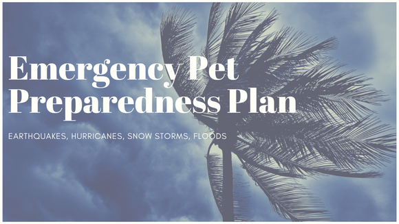 Emergency Pet Preparedness Plan