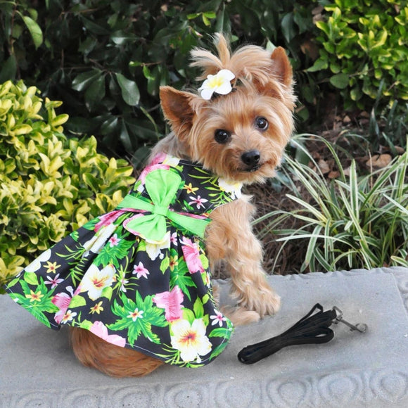 Black Hawaiian Dog Dress w/ matching Leash