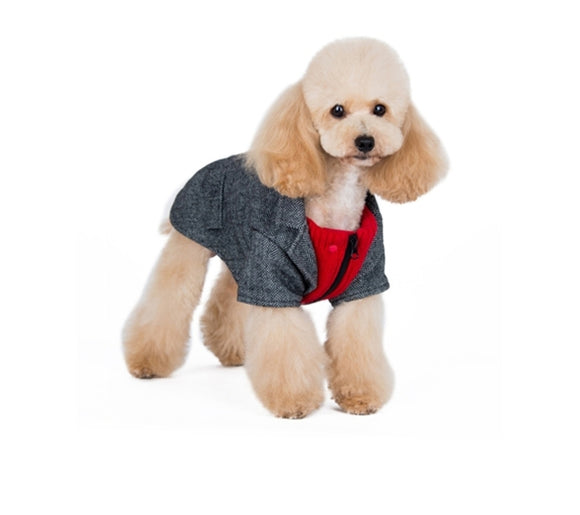 Tweed Blazer Grey/Red Dog Sweater