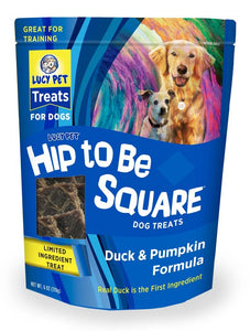 Lucy Pet Hip to Be Square Duck and Pumpkin Dog Treats 6oz.