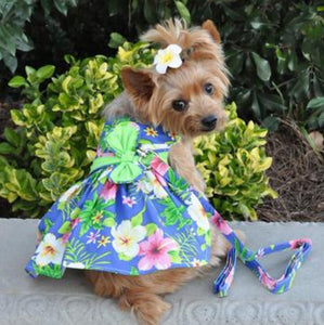 Blue Hawaiian Dog Dress w/ matching Leash