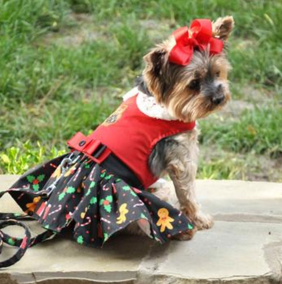 Gingerbread Holiday Dress w/ matching Leash