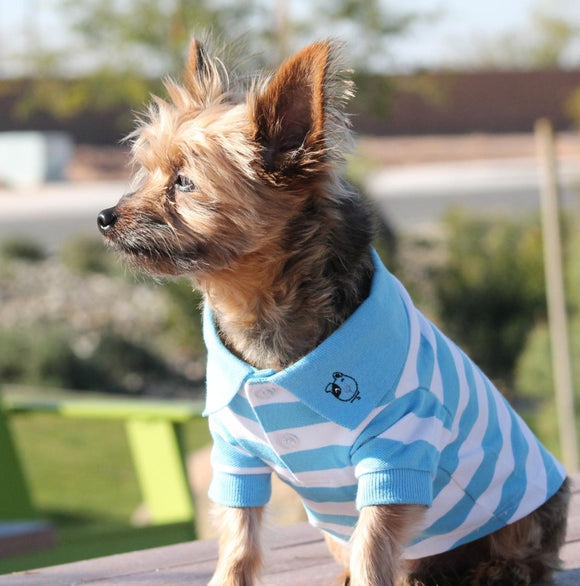 Striped Polo Dog Shirt