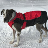 Red and Black All Weather Dog Coat
